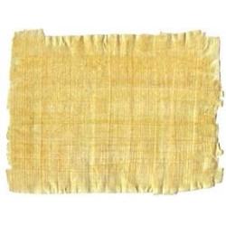 Hojas de papiro 16 x 20