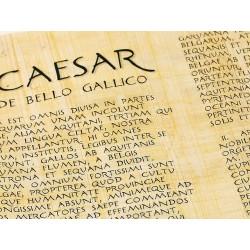 "Rollo de papiro en latín- Caesar ""De Bello Gallico"""
